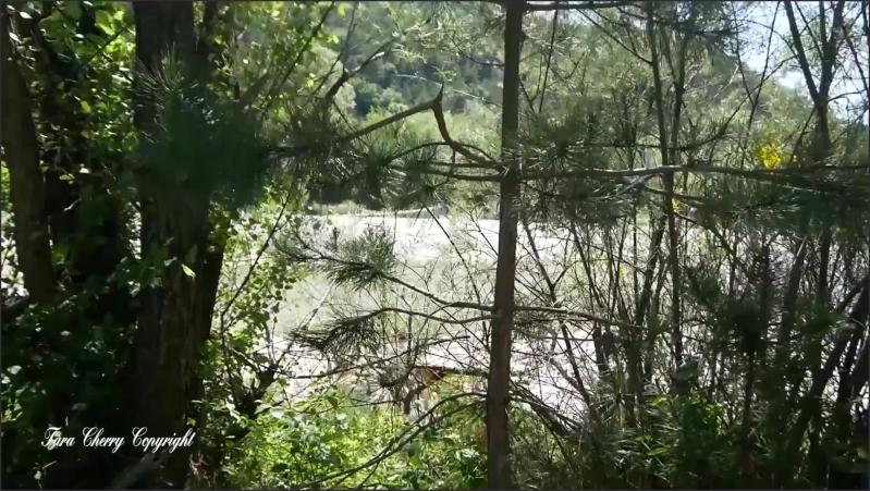 [Full HD] exhib and fuck with strangers   - taracherryx - -00:32:48 | Verified Amateurs, Strangers - 1,1 GB