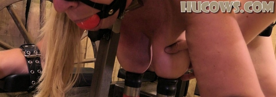 [Full HD] HuCow 54 red cow milker HuCow 54 - HuCows.com-00:11:33 | Milking Pump, Blindfold - 1,2 GB