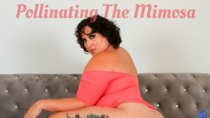 [Full HD] Will Tile Pollinating The Mimosa Will Tile - ManyVids-00:23:52 | BBW,BBW Interracial,Big Ass,Creampie,Impregnation Fantasy - 563,3 MB