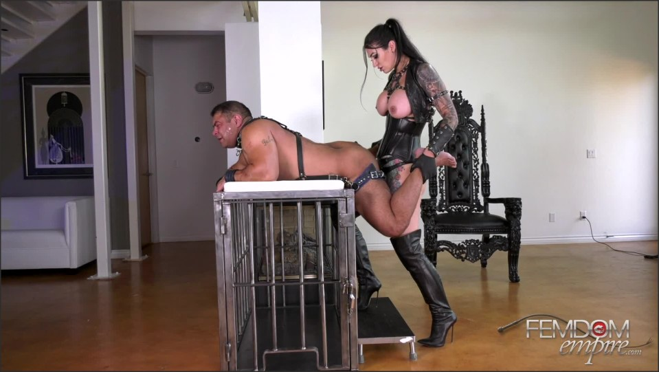 [Full HD] Goddess Damazonia. Amazon Butt Fuck Goddess Damazonia - FemdomEmpire-00:11:47 | Anal, Chastity, Brunette, Big Tits, Pegging, StrapOn, Tattoo, High Heels, Femdom - 856,3 MB