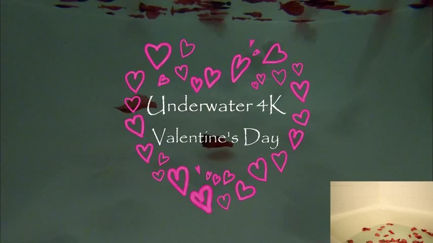 [4K Ultra HD] Kitty Moon Underwater 4K Valentines Ft Bad Dragon Kitty Moon - ManyVids-00:18:00 | Bad Dragon,Masturbation,POV,Underwater Fetish,Valentine'S Day - 2,5 GB