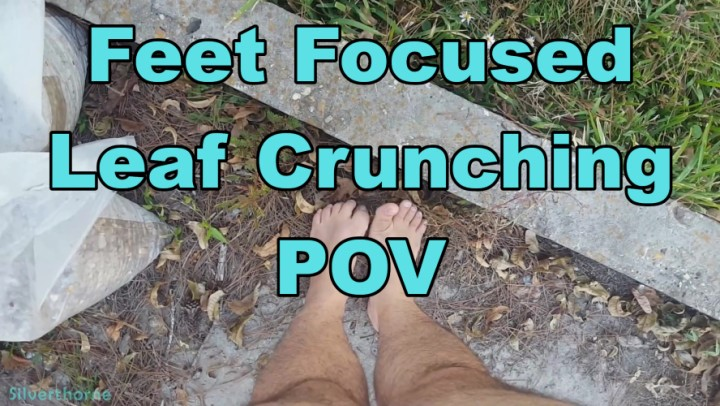 [Full HD] Silverthorne Feet Focused Leaf Crunching Pov Silverthorne - ManyVids-00:06:35 | POV,Barefoot,ASMR,Food &Amp;Amp; Object Crush,Hairy,SFW - 776,2 MB