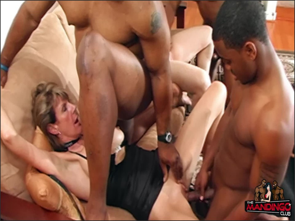 [Full HD] The Mandingo Club Cougars 4 Black Part 1 The MANDINGO Club - Manyvids-00:23:45 | Size - 1,7 GB