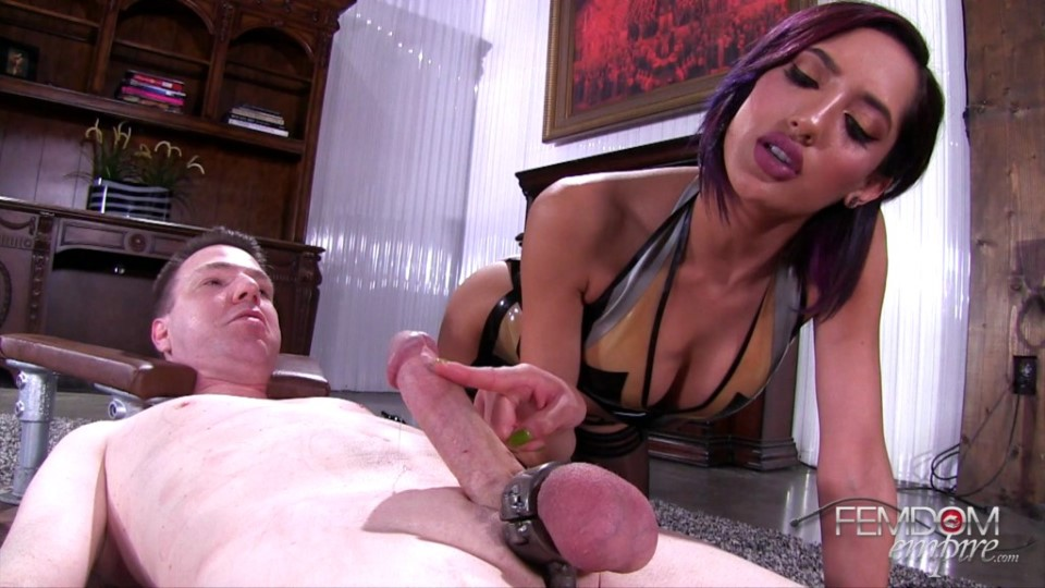 [Full HD] Chloe Amour - Do You Like Me Teasing Your Cock Chloe Amour - FemdomEmpire.Com-00:13:27 | Femdom, CBT, Bondage, Chastity, Handjobs, Cum Eating, Pussy Worship, Face Sitting - 1,1 GB