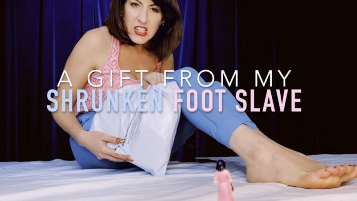 [Full HD] dommetomorrow a gift from my shrunken foot slave DommeTomorrow - ManyVids-00:08:24 | Giantess,Shrinking Fetish,Foot Slave Training,Foot Domination,Shoe Fetish,SFW - 137,6 MB