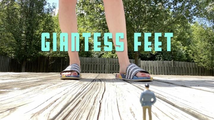 [Full HD] Dommetomorrow Giantess Feet DommeTomorrow - ManyVids-00:06:41 | Giantess,Giants,Foot Domination,Shrinking Fetish,Foot Fetish,SFW - 259,6 MB
