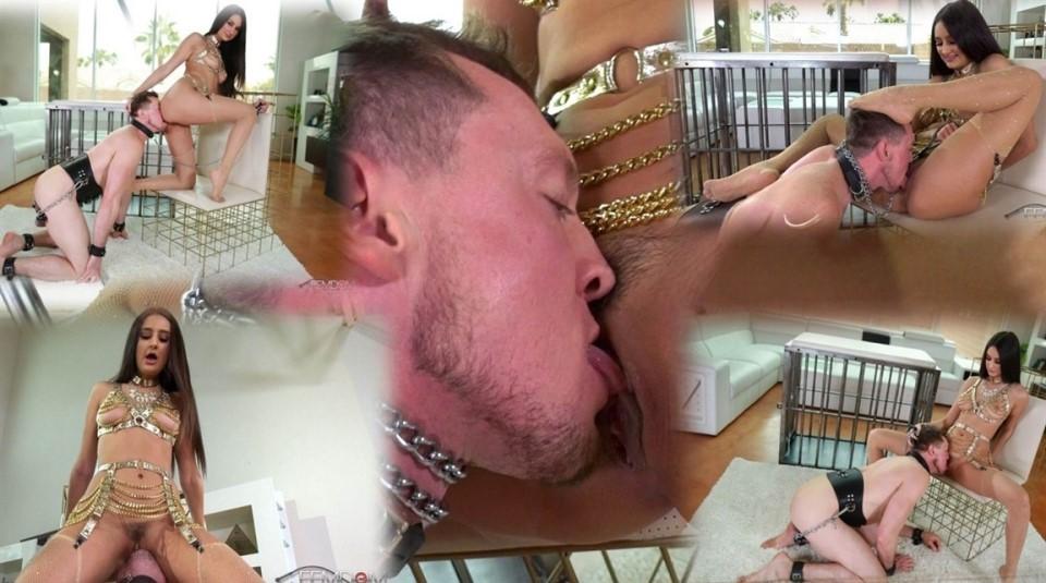 [Full HD] Eliza Ibarra - Pain Is Her Pleasure Eliza Ibarra - FemdomEmpire.Com-00:13:30   CBT, Stockings, Femdom, Chastity, Pussy Worship, Pussy Licking, FaceSitting - 982,3 MB