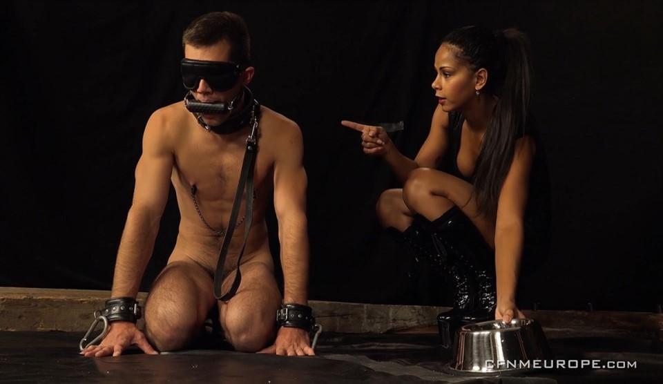 [Full HD] Personal Slave Alan Carly, Isabella Chrystin - CFNMEurope.Com-00:50:37 | Strapon, CFNM, Femdom, Handjob, Toys - 1,5 GB