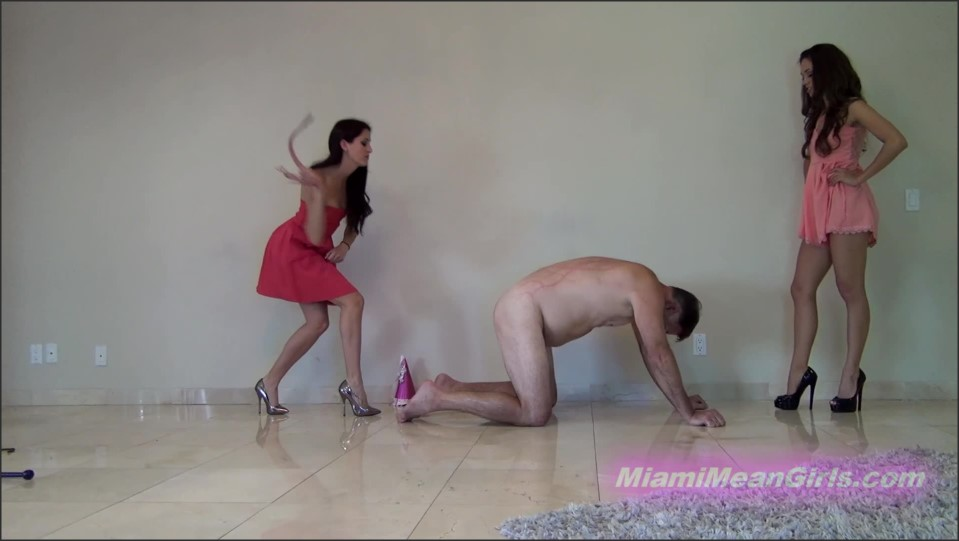 [Full HD] Princess Beverly &Amp; Goddess Rodea. Little Step-Sister'S 18Th Birthday Princess Beverly, Goddess Rodea - MiamiMeanGirls.Com-00:08:43 | Whipping, Corporal Punishment, High Heels, Femdom, Humiliation, BDSM, Brunette, Pain - 761,2 MB
