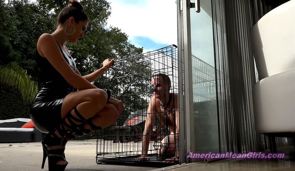 [Full HD] Princess Beverly. Beaten For Fun And Profit Princess Beverly - AmericanMeanGirls-00:19:19 | Brunette, Humiliation, Pain, BDSM, Corporal Punishment, Whipping, Femdom, High Heels, Beatdowns - 977,8 MB