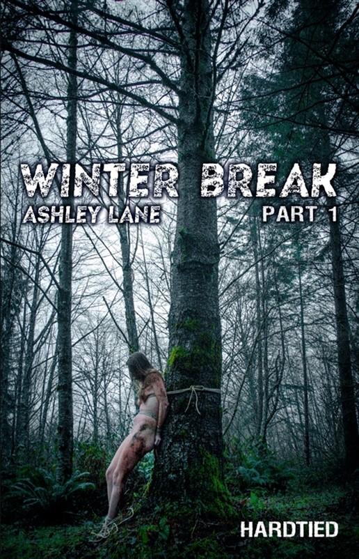[HD] Ashley Lane. Winter Break Part 1 Ashley Lane, OT - HardTied-00:42:01 | Bondage, BDSM, Humiliation, Torture - 2,2 GB