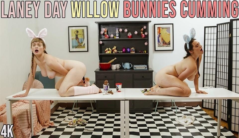 [Full HD] Laney & Willow - Bunnies Cumming Laney & Willow - SiteRip-00:18:39 | masturbation, dildo, lesbian, hairy - 1,1 GB