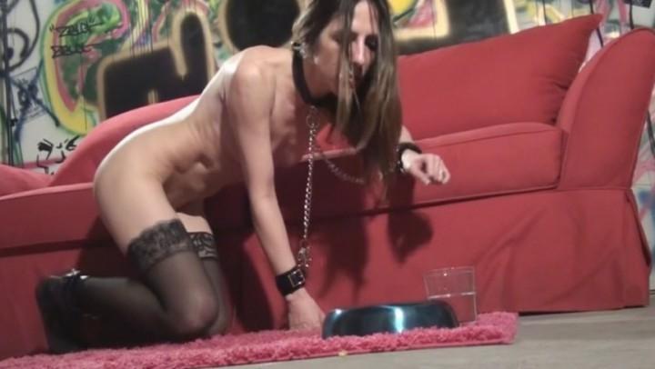 [HD] Marie Madison Meal Training Marie Madison - ManyVids-00:10:01 | Slut Training, Submissive Sluts, Face Fucking, Verbal Humiliation, Cum Swallowers - 378,9 MB