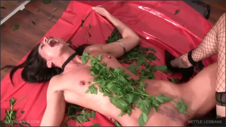 [HD] Queensnake Nettle Lesbians 720P Queensnake - Clips4Sale-01:23:08   Size - 1,2 GB