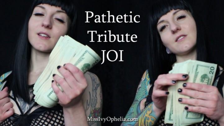 [Full HD] Missivyophelia Pathetic Tribute Joi MissIvyOphelia - ManyVids-00:11:18 | Financial Domination,Femdom,JOI,Verbal Humiliation,Jerk Off Instruction - 799 MB